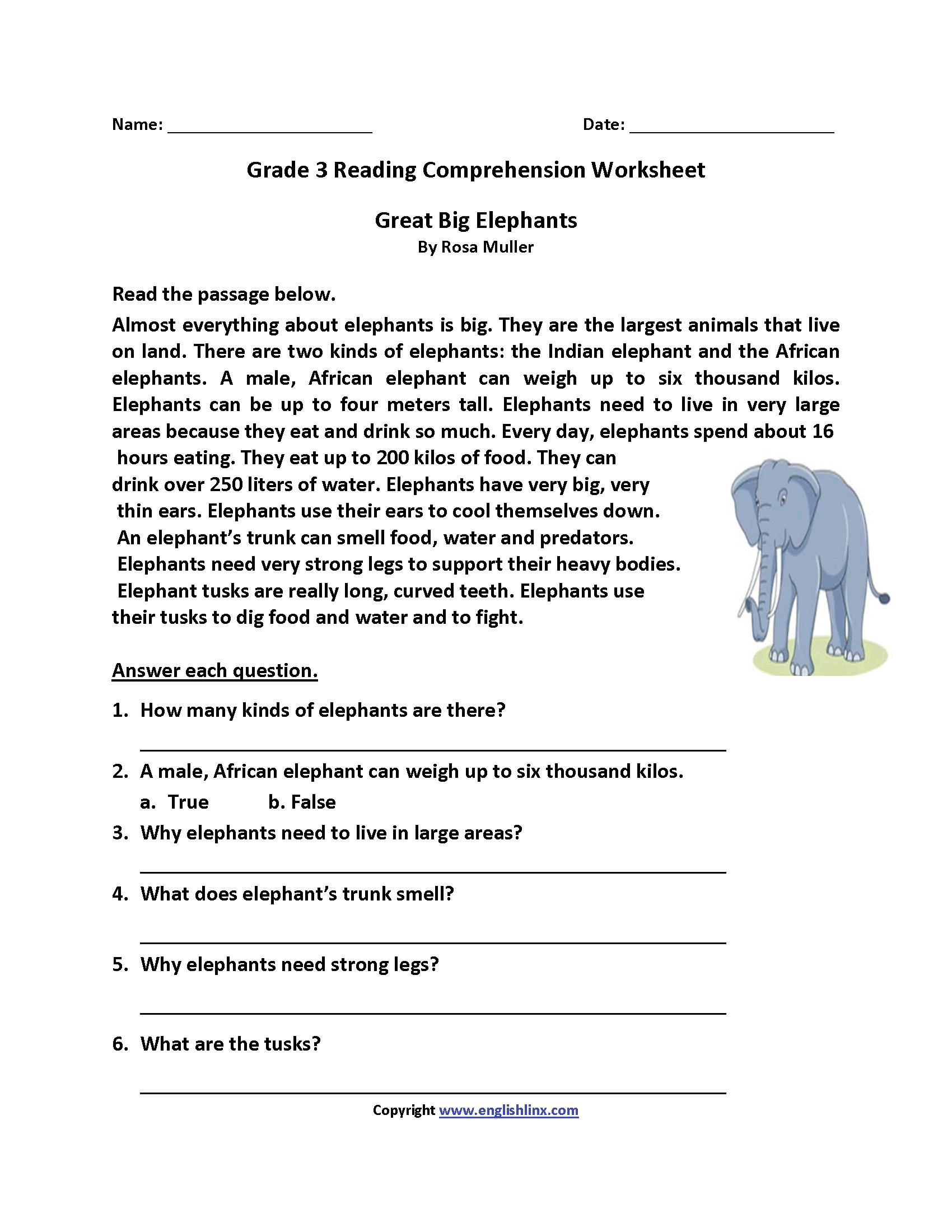 - Great Big Elephants Third Grade Reading Worksheets Reading On