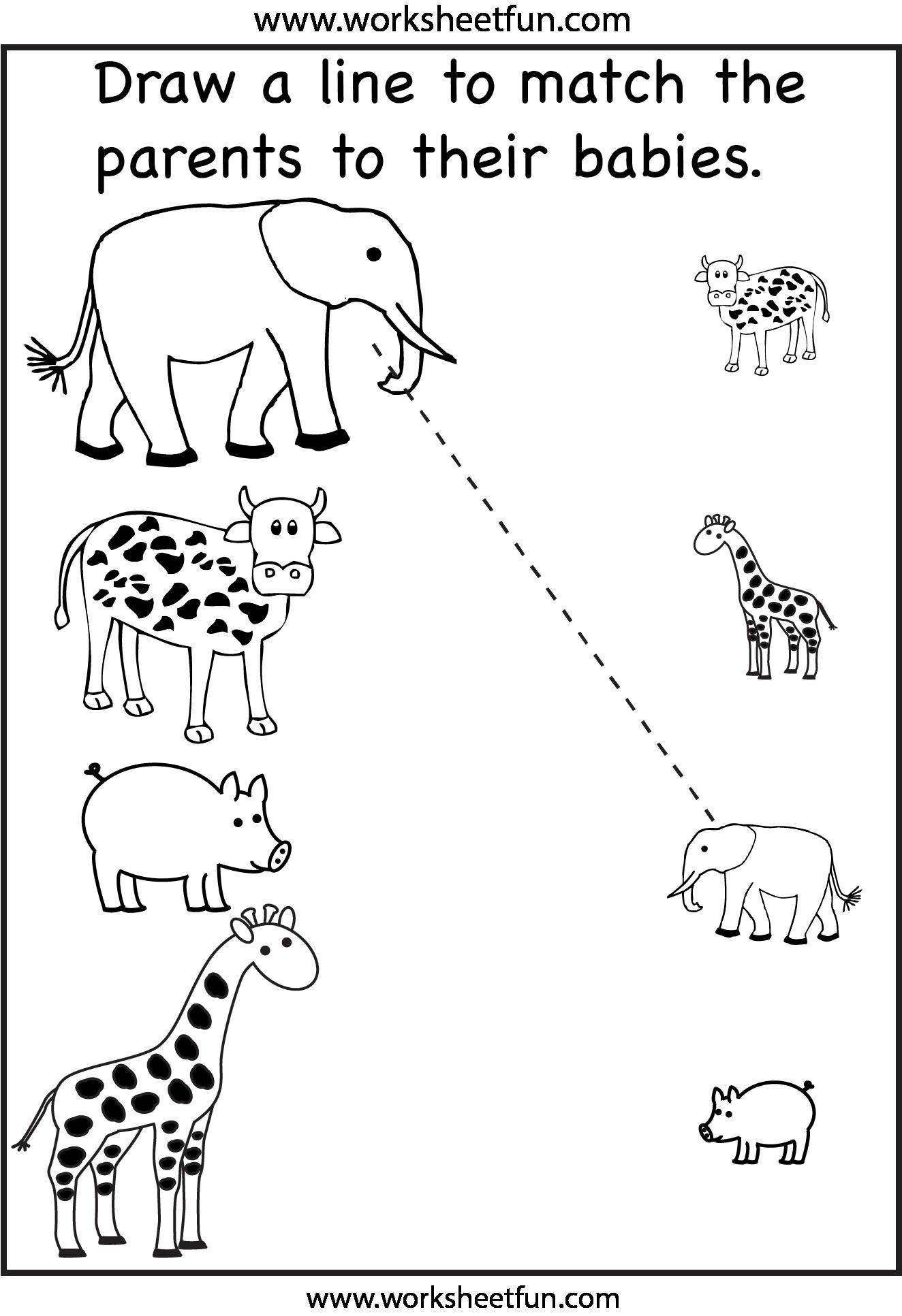 Preschool Worksheets | Animais | Atividades, Matemã¡tica